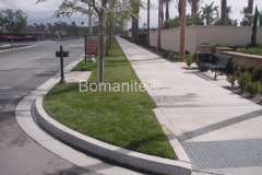 Bomanite Concealed Grasscrete Concrete Median Clubb Grading